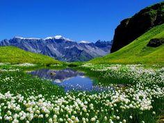 Chüebodensee Lake             Swiss Alps