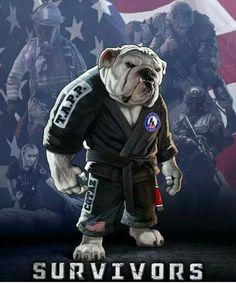 BJJ Bulldog