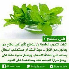 Benefit, Veggies, Golf, Herbs, Culture, Eat, Vegetables, Herb, Vegetable Recipes