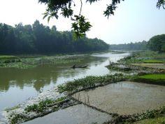 Chitra river