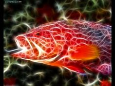 3D Wallpapers - Fractal Animals Wallpapers