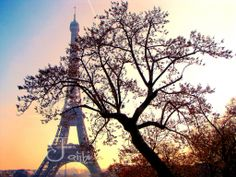 from my trip to Paris in 2009 . beauty is everywhere in Paris and you feel like a movie star walking across those charming boulevards :) Tour Eiffel, Pictures To Paint, Paris France, Movie Stars, How Are You Feeling, Around The Worlds, Tours, In This Moment, Sunset