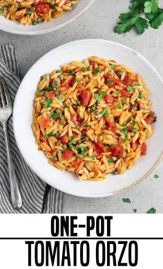 Life is busy and most of us are looking for quick, easy, and filling meals to feed our families. However, that doesn't mean we have to sacrifice taste. Simple meals can be full of flavor! This One-Pot Tomato Orzo Recipe fits the bill and will make your weeknight complete. #onepotmeals #orzorecipes #tomatoorzo #veganhuuggs #onepanmeals Vegan Dinner Recipes, Vegan Dinners, Beef Recipes, Veggie Recipes, Vegetarian Recipes, Cooking Recipes, Healthy Recipes, One Pot Recipes, Vegetarian One Pot Meals
