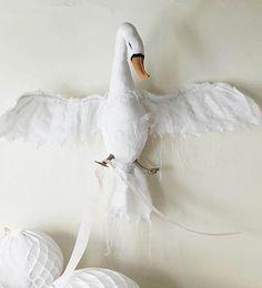 Tamar morgendorff swan