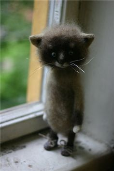 35 cm wool cat, felted. Omg not real, but how cute is this!Meine nächste Marionette wird eine Katze