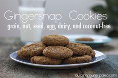 gingersnap cookies by autoimmune-paleo.com @auotimmunepaleo #aipaleo #thepaleoapproach #paleo