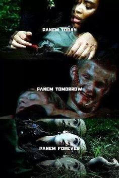 1000 images about cato on pinterest the hunger game