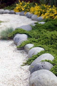 River rock garden, Rock garden landscaping, Garden edging, Landscape edging, Asian garden, Landscaping with rocks - From smooth river rock to slate and beyond, discover the top 40 best stone edging id - #Riverrock #garden Rock Edging, Rock Border, Stone Edging, Lawn Edging, Metal Garden Edging, Concrete Garden, Flower Bed Borders, Garden Borders, Garden Paths