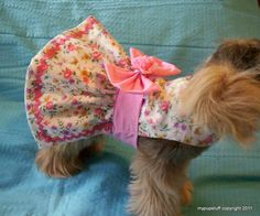 Patrones de ropa para mascotas - Patrones gratis - Pet Fashion clothes for dogs and cats Ideas from Professionals Yorkshire Terriers, Dog Clothes Patterns, Sweater Patterns, Dog Jacket, Dog Items, Puppy Clothes, Pet Fashion, Dog Pattern, Dog Sweaters