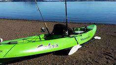 Kayak Fishing in New Zealand - Kawakawa Bay