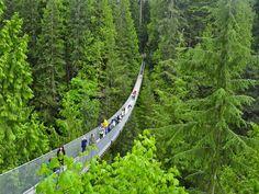 El puente colgantesobre el río Capilano en el norte de Vancouver, Columbia Británica. El puente es de 136 metros y está situado a una altura de 70 metros. Fue construido en 1889 por el ingeniero escocés George McCain.  En un primer momento, el puente estaba hecho de cuerda de cáñamo y tabla de cedro. En 1903, la cuerda de cáñamo fue sustituido por un cable multi-conductor y en 1956 el puente fue reconstruido por completo. Cada año, el puente recibe cerca de 800 000 turistas.