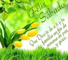 Feliz sábado! Que Dios te de a ti y tu familia un fin de semana de paz y gozo.