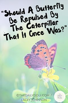 Does A Butterfly Hate The Caterpillar That it Once Was?
