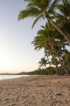 Palm Cove Beach – Cairns, Australia – 2020 World Travel Populler Travel Country Cairns Australia, Australia Beach, Australia Travel, Image Deco, Beach Wallpaper, Blog Voyage, Travel Aesthetic, Island Life, Dream Vacations