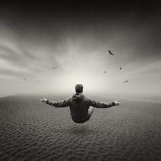 Meditation 8088 by Toni Polkowski