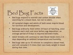 8 Bed Bug Facts Bed bugs respond to warmth and carbon dioxide when searching for a blood meal, but not to odors. All nymph. Bed Bug Size, Bed Bug Remedies, Rid Of Bed Bugs, Bed Bugs Treatment, Roaches, Nymph, Pest Control, Household Tips, Housekeeping