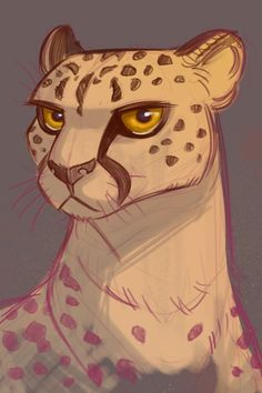 Image result for cheetah drawing