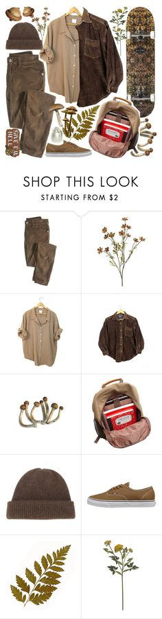 """""""Vintage brown"""" by cosmicflower ❤ liked on Polyvore featuring Wrap, Bellino, The Elder Statesman, Vans, Crate and Barrel, Rosehound, vintage, skater and dude"""