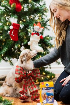 Gifts for Four-legged  Friends