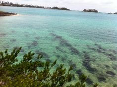 The most beautiful beaches in Bermuda better than Hawaii!!