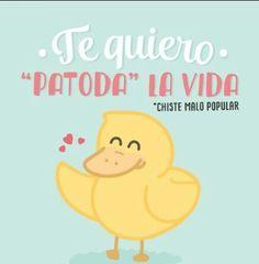 Haha so cute - Mr Wonderful Funny Love, Cute Love, Cute Puns, Love Phrases, Spanish Quotes, Education Quotes, Funny Images, Words Quotes, Funny Art