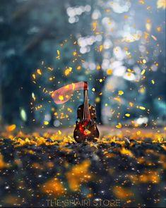 Hd Flower Wallpaper, Love Wallpaper Backgrounds, Rain Wallpapers, Cute Love Wallpapers, Beautiful Flowers Wallpapers, Beautiful Nature Wallpaper, Green Background Video, Black Background Wallpaper, Banner Background Images
