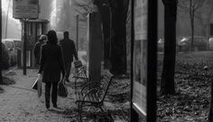 Street Luca Negrin