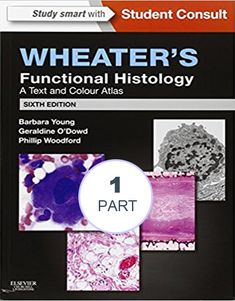 Wheater's Functional Histology: A Text and Colour Atlas  – Part – 1 #usmle #books #pdf #usmlebookspdf #step1 #step2 #step3 #usmlebooksonline #usmlestep3 #usmlestep2 #usmlestep1 #usmlebooksdownload