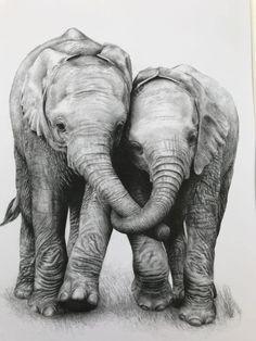Baby Elephant Drawing, Elephant Sketch, Elephant Love, Elephant Art, Realistic Elephant Tattoo, Elephant Family, Cute Wild Animals, Animals Beautiful, Baby Animals