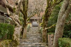 The steps leading up to the Jakkō-in (寂光院) in Ōhara, Kyoto, Founded by Prince Shōtoku Taishi (聖徳太子) in 594!