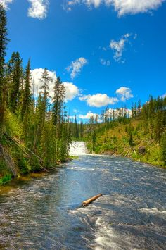 Yellowstone National Park...by Gary P Kurns Photography
