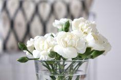 homevialaura | Gauhar | gauharshop.com | Ikat cushion | white flowers