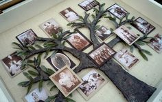 How To Make A Family Tree Picture Shadow Box Project » The Homestead Survival