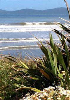 Paekakariki, New Zealand, Neuseeland - Natur pur