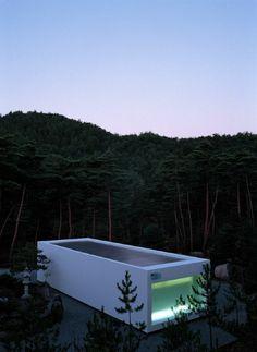 petite piscine hors sol dans la forêt