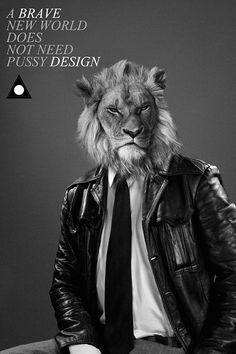 Designer Harry Seifert