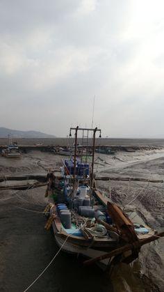 Tidal Mudflats on #Ganghwa Island, Korea