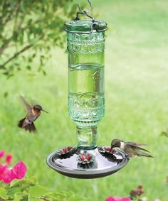 #Hummingbirds on a Perky-Pet® Antique Bottle Glass Hummingbird Feeder (http://www.birdfeeders.com/store/hummingbird-feeders/8108-2).