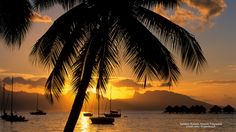 Tahitian Sunset, French Polynesia