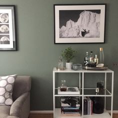 By using Card Room Green, Claudia has completely transformed her all grey, black and white living room, and has made it more on trend and stylish.