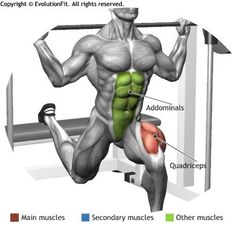 QUADRICEPS - BULGARIAN MULTIPOWER SPLIT SQUAT