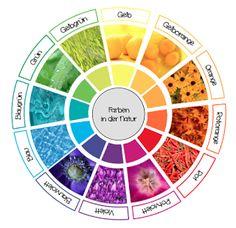 materialwiese: Farben in der Natur - Legekreis