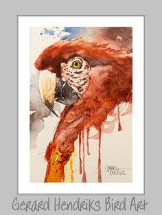 Watercolor Watercolor Bird, Watercolor Paintings, Birds, Butterflies, Art, Watercolour Paintings, Bird, Watercolor Drawing, Butterfly