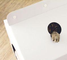 Milk Box Carton-Shaped Pet House | Design Milk