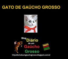 Diário de um Gaúcho Grosso: GATO DE GAÚCHO GROSSO..O GATO MARAGATO