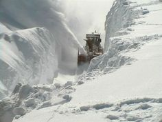 Up here in the Northern part of Michigan we just recovered from a weather event of Biblical proportions – a historic blizzard of up to 44″ inches of snow and winds to 90 MPH that broke trees in half, knocked down utility poles, stranded hundreds of motorists in lethal snow banks, closed ALL roads, isolated scores of communities and cut power to tens of thousands.