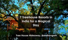 7 Treehouse Resorts in India for a Magical Stay know holiday packages visit : http://www.indiafly.com/