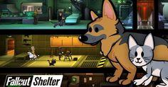 Fallout e Ski Safari 2 estão entre os melhores jogos da semana para iOS