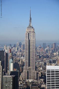 I want to go to New York this summer