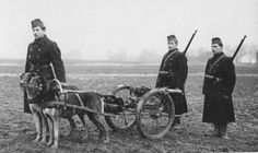 Flanders Field Museum, Ieper - Belgium ( World War I - De Grote Oorlog) http://www.inflandersfields.be/